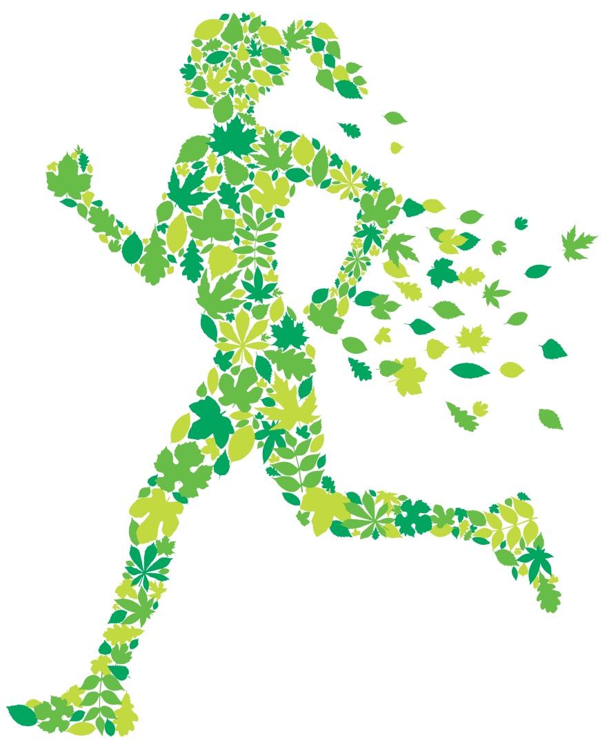 Leaf Runner